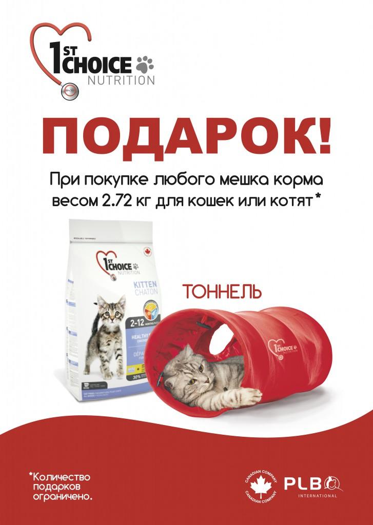 FCh272kg_tonnel